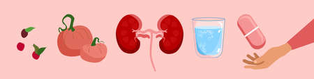 Kidney health diet horizontal banner.Nephrology.Pyelonephritis and renal failure disease.Human organ,food and glass of water with pill.Stones,chronic illness.Problem with filtration,dialysis.Vector