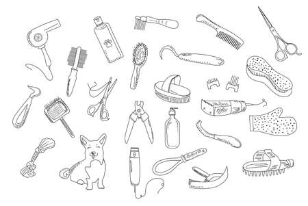 Grooming tools for dog`s fur and nails care.Vector set in doodle style.Outline vet equipment.Online pet shop or store.Ordering goods for domestic animal from home.Finding master through internet.