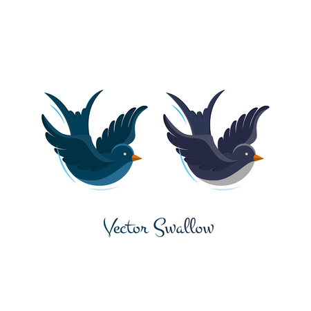ornithological: Swallow vector,  illustration isolated on white background. Birds flying, animals, bird made in flat style, bird vector. Swallow logo