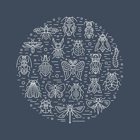 Bugs and insects circle design on background