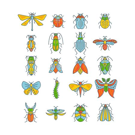 Bugs and insects isolated on white background Stock Vector - 127108317