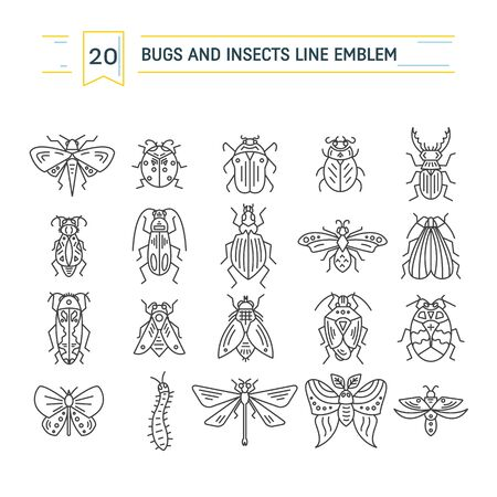 Bugs and insects isolated on white background Stock Vector - 127108565
