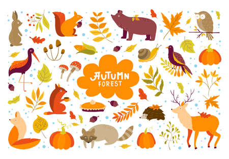 Vector set of Autumn cartoon characters, plants and leaves. Fall season. Forest animals. Collection for design and Autunm decoration