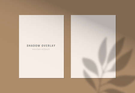 Vector shadow overlay effects on white papers. Branding and mockup presentations. Natural sun lighting and shadow. The leaves overlays shadows Çizim