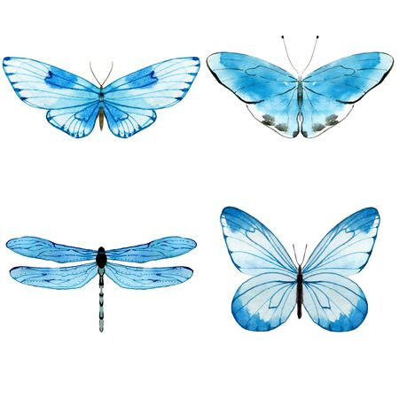 Watercolor blue butterflies. Collection of insects isolated on white. Hand painted illustration for summer design.
