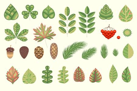 あなたの創造性のための自然なハーブコレクション。定型化された葉、植物要素。ベクトルイラスト  イラスト・ベクター素材