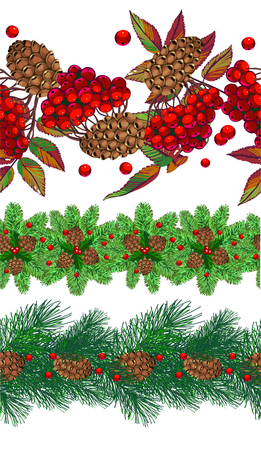 a set of horizontal seamless patterns with rowan, spruce and cones. Vector illustration