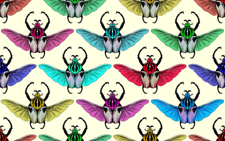 Seamless pattern with goliath beetle. Vector illustration