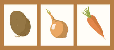 vegetable set with potato onion and carrot vector illustration. For menu, ingredients cooking kitchen. Fresh farm market vegetables collection, vector logo isolated. Healthy eco bio organic nutrition