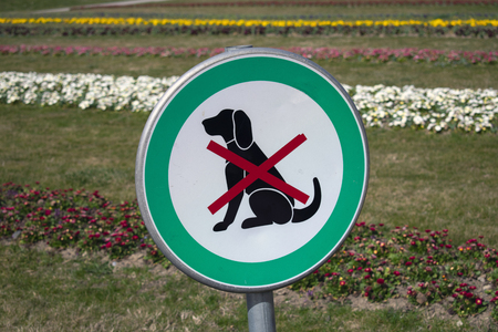Sign that says no dogs allowed, dogs forbidden. Park in the background, flowers. 写真素材
