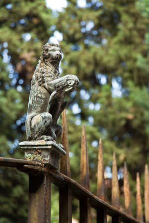 rusted wrought iron fence,with the lions figure as decoration, shallow depth of field