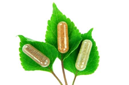 herbal capsules on sage leaves