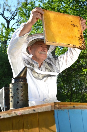 Experienced senior beekeeper working in his apiary in the springtime 免版税图像