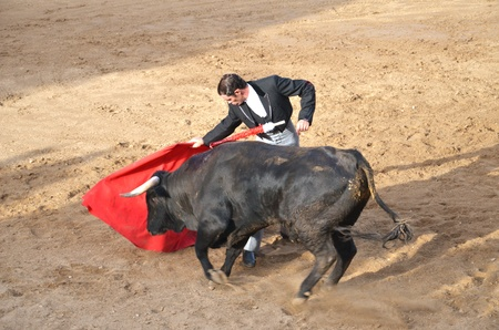 Fontanar, Spain – August 19, 2012 : Toreador fighting with bull during corrida show. Editorial