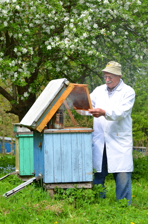 apiculteur 49