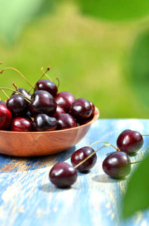 gean: closeup of ripe, fresh and sweet cherries in a bowl on table in the garden