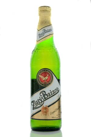 dewed: Zlaty Bazant light beer isolated on white background