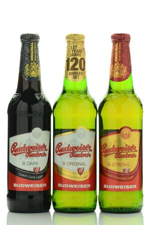 budvar: Budweiser lager beer isolated on white background. Editorial