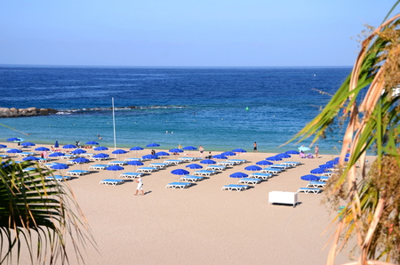 las vistas: Beautiful sandy Playa de las Vistas in Los Cristianos on Tenerife, Spain