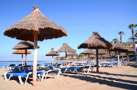 playa: Beautiful sandy Playa del Camison in Playa de las Americas on Tenerife, Spain