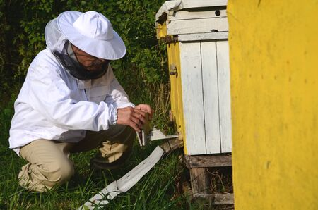 apiarist: experienced apiarist making fumigation against diseases of bees in apiary in the autumn Stock Photo
