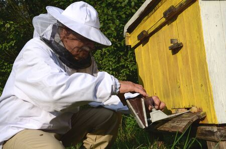 fumigation: experienced apiarist making fumigation against diseases of bees in apiary in the autumn Stock Photo