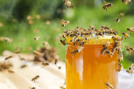 swarm of bees around a jar full of honey in apiary Stock Photo