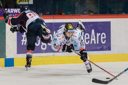ZAGREB, CROATIA - OCTOBER 31, 2017: EBEL ice hockey league match between Medvescak Zagreb and Orli Znojmo. Adam RASKA (66) falling and still leading the puck