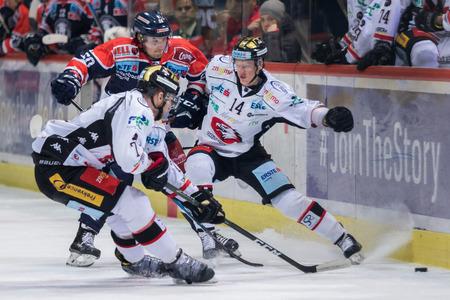 ZAGREB, CROATIA - OCTOBER 31, 2017: EBEL ice hockey league match between Medvescak Zagreb and Orli Znojmo. Hockey players in action