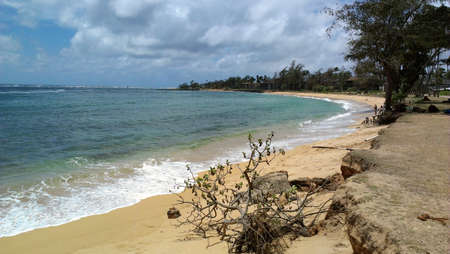 Coastal Beach in Kapaa, Kauai Hawaii Stok Fotoğraf