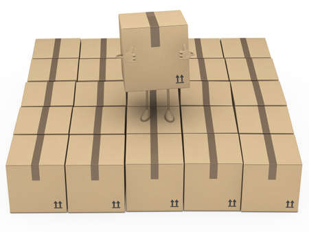 removals boxes: brown package figur stand and shows top