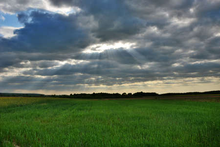 Sunrays breaking through clouds and green meadow