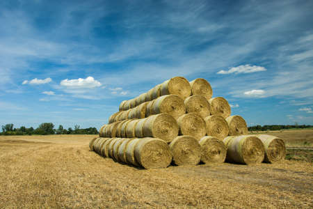 Stacked hay bales in the field and blue sky