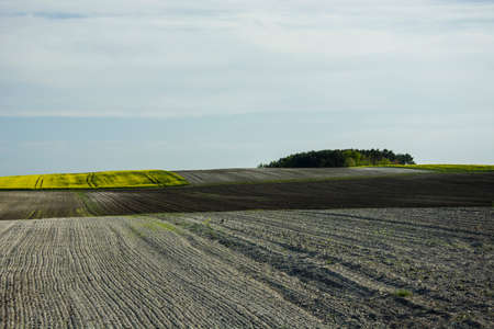 plowed fields and sky