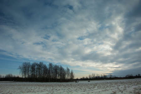 Snow-covered field, clouds and blue sky - winter view Stock fotó