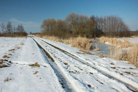 Melting snow on a dirt road through a wild meadow, copse and a cloudy blue sky