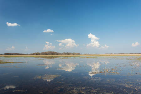 Large meadow flooded with water, reflection of clouds in water, horizon and blue sky