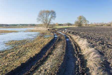 Winding muddy road through fields, a tree on the horizon and sky - view on a sunny day Stock Photo