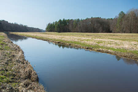 Quiet river and large meadow in front of the forest and blue sky - view on a sunny spring day Imagens