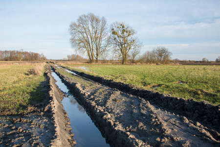 Muddy road through fields after rain, trees and sky - view on a sunny day