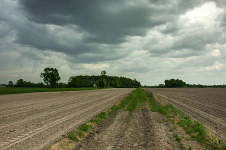 Stormy dark clouds, trees and a road through a plowed field