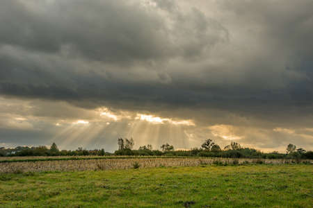Sun rays under clouds and green meadow Stockfoto - 128569795