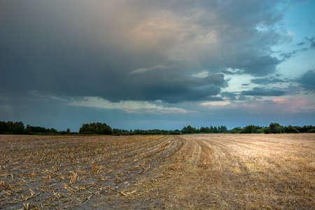 Coloridas nubes de lluvia después del atardecer sobre un campo de rastrojo. Nowiny, Polonia