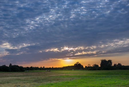 The setting sun and blue evening clouds over the meadow