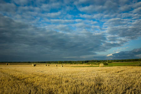 Hay bales in a field in eastern Poland, horizon and dark clouds on blue sky