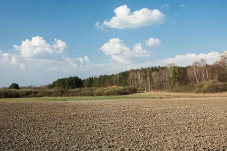 Plowed field, forest and clouds in the sky - view in the spring day