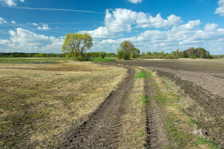 Tractor wheel tracks in field, trees and white clouds on blue sky - sunny spring day