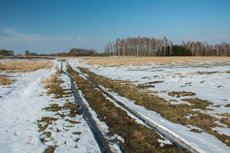 Melting snow on a dirt road through fields and wild meadows, coppice and clear blue sky Stock fotó