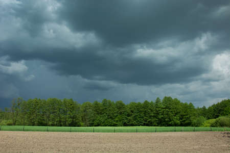 Storm clouds, green trees and field Stock Photo