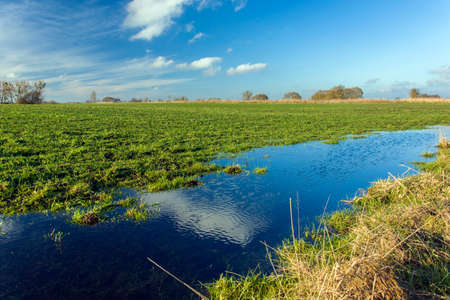 Water on a green rural field, horizon and blue sky